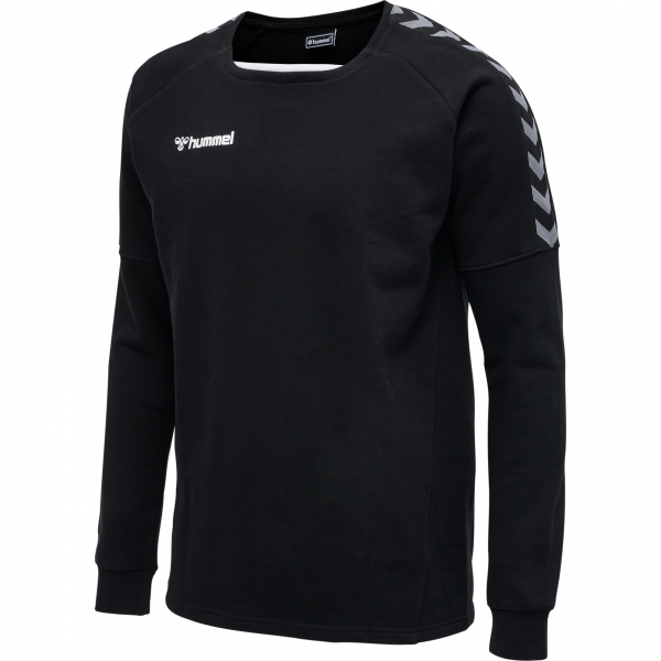 Hummel AUTHENTIC TRAINING SWEAT