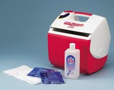 Kühlbox/Eisbox klein